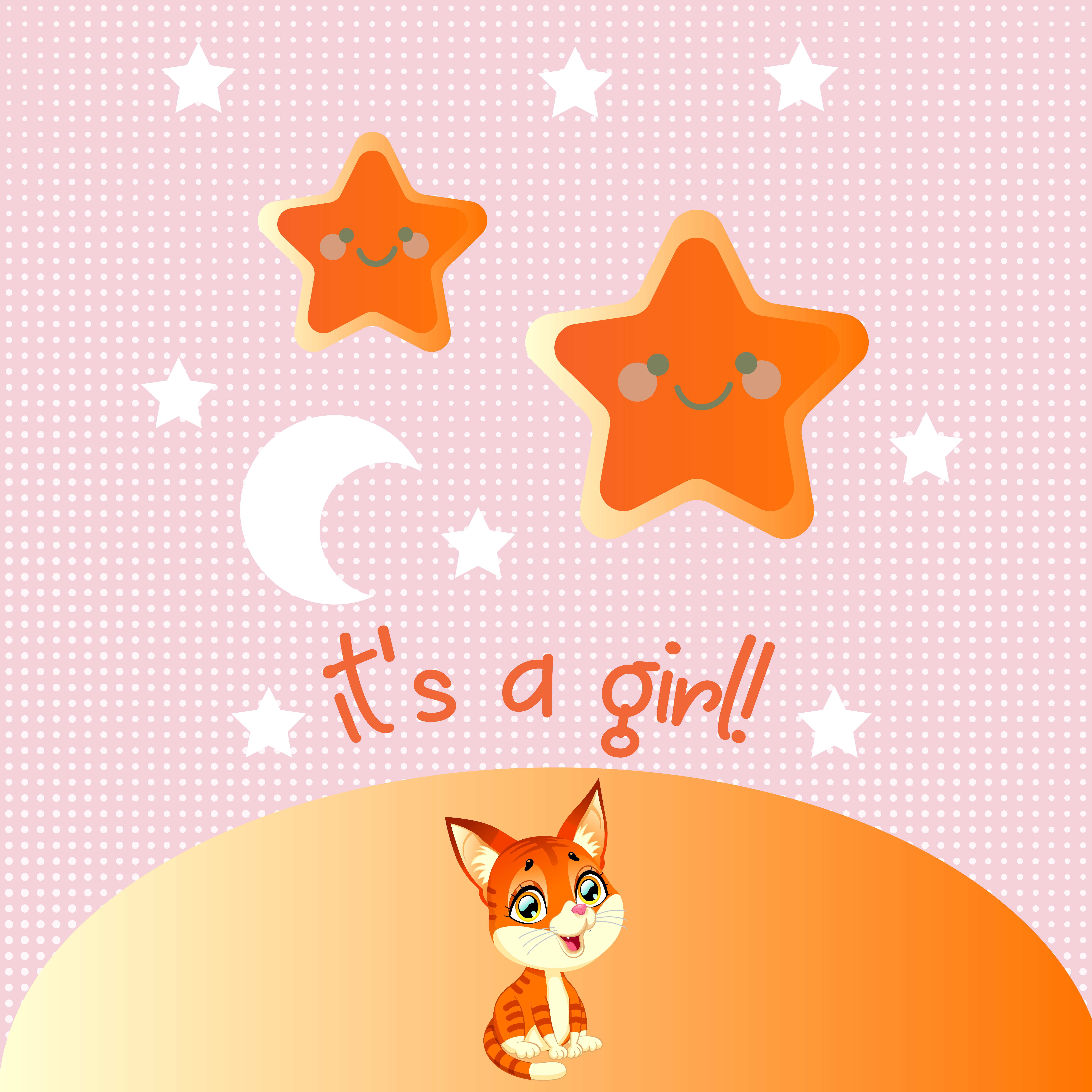 it's a girl – baby cat